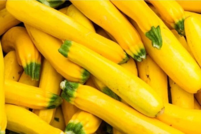Yellow Squash, (Packaged)