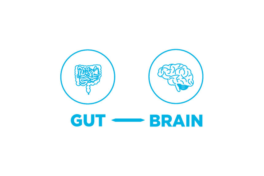 gut instinct transform your life and health with the power of your gut