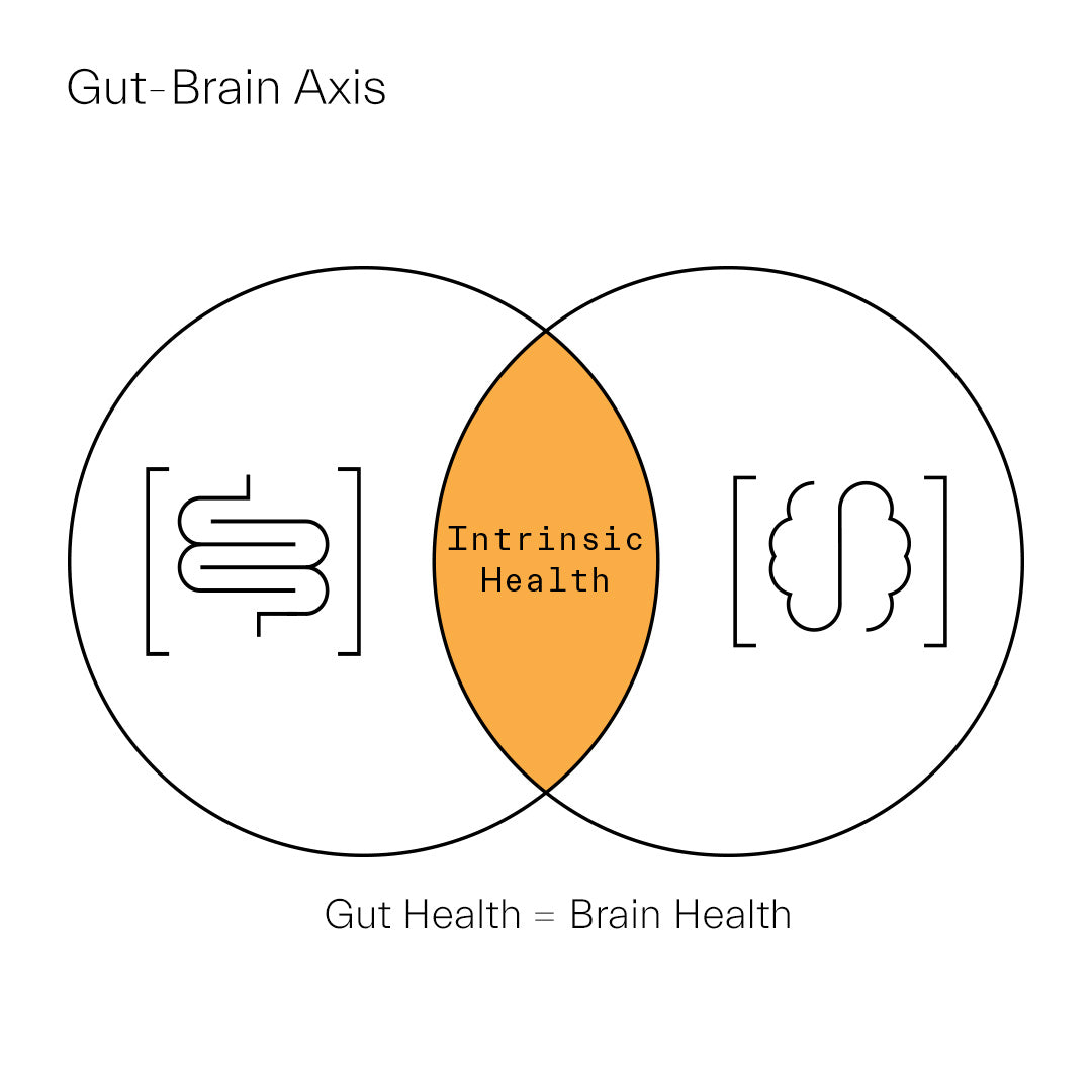 The Gut-Brain Axis is the surprising connection between the gut microbiome and brain health