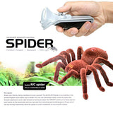 Realistic Spider with remote control