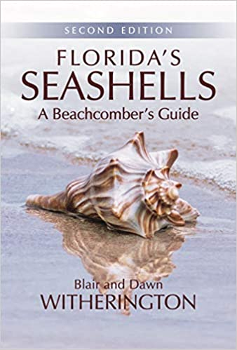 Florida's Seashells: A Beachcomber's Guide Second Edition