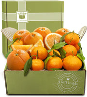 Holiday Citrus Duet Fruit Gift Box