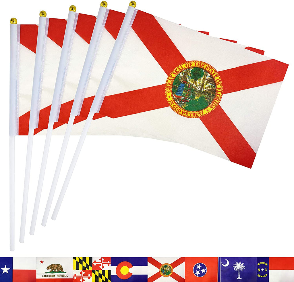 Florida State  FL Flags Banner On Stick,Party Decorations Supplies for Parades,School Sports Event,International Festival Celebration