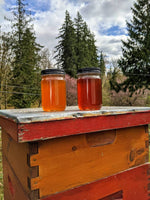 1 pound raw honey natural honey Western Washington
