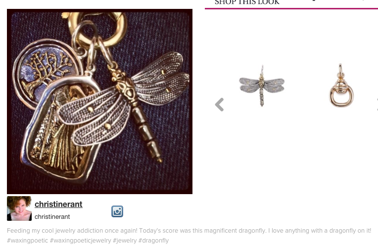 instagram-post-dragonfly
