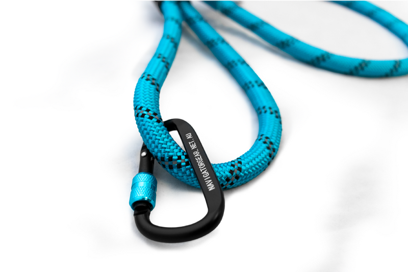 Navigator - Dog Leash Buddy | RV Online | Shop Camping & Caravanning Gear Online