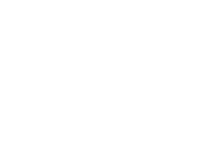 Only Dining Chairs