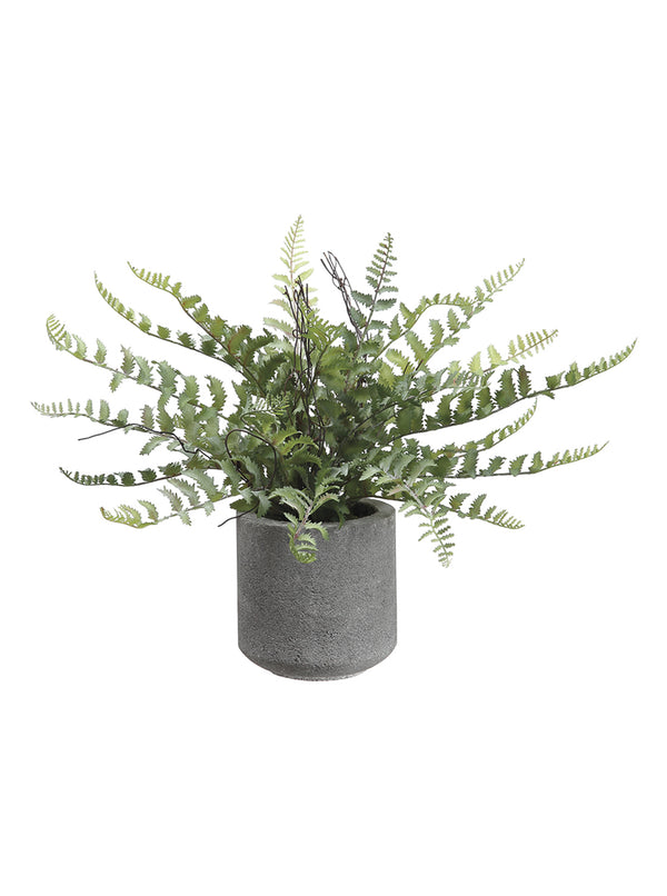 Faux Cement Potted Fern