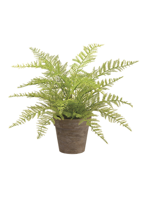 Faux Paper Mache Potted Fern
