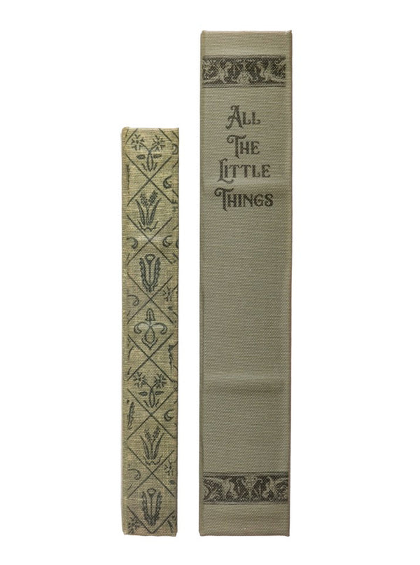 Little Things Book Box, Set of 2