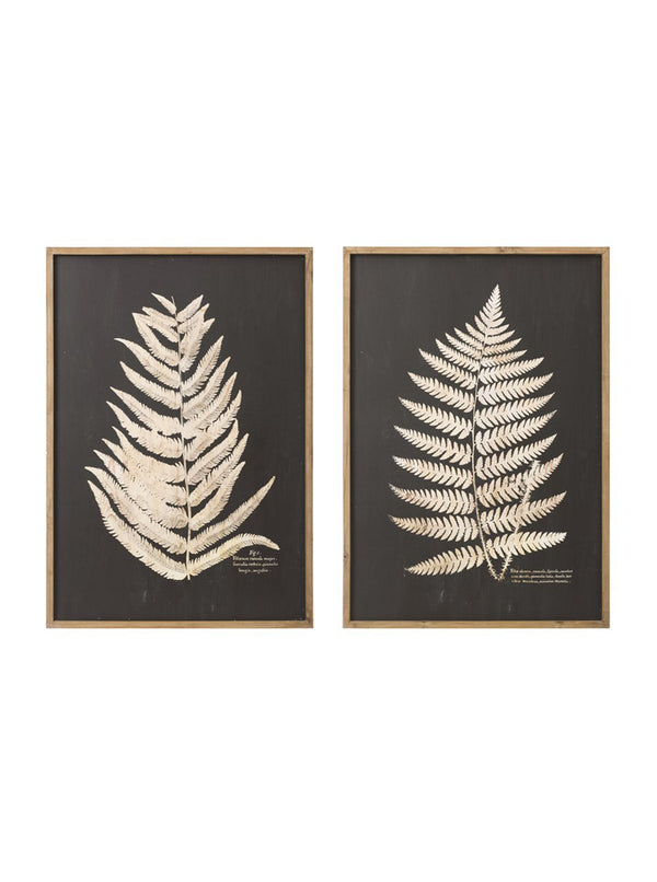 Monochrome Fern, Set of 2