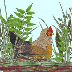 Tatty Co cards:  Spring Chicken