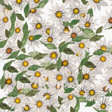Tatty Co cards:  Daisy Daisy