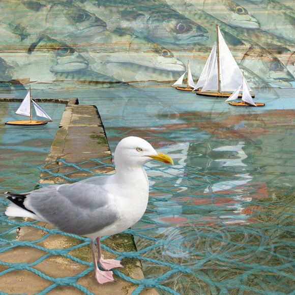 Claire Gill cards - Seascape 16 - Seagull