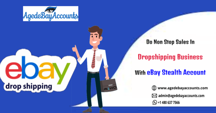 Do Non Stop Sales In Dropshipping Business With eBay Stealth Account