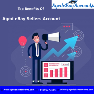 Top Benefits Of Aged Ebay Sellers Account