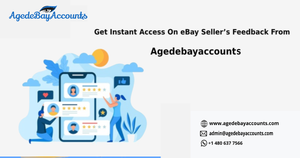 Get Instant Access On eBay Seller's Feedback From Agedebayaccount