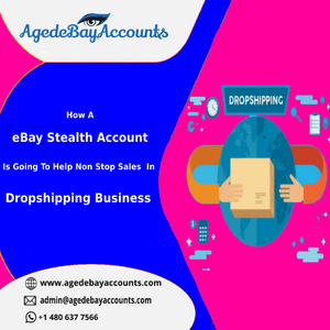 How A eBay Stealth Account Is Going To Help Non Stop Sales In Dropshipping Business