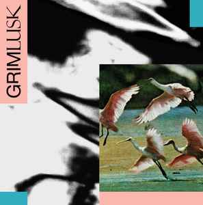 Load image into Gallery viewer, Grim Lusk ‎– SUNP0101