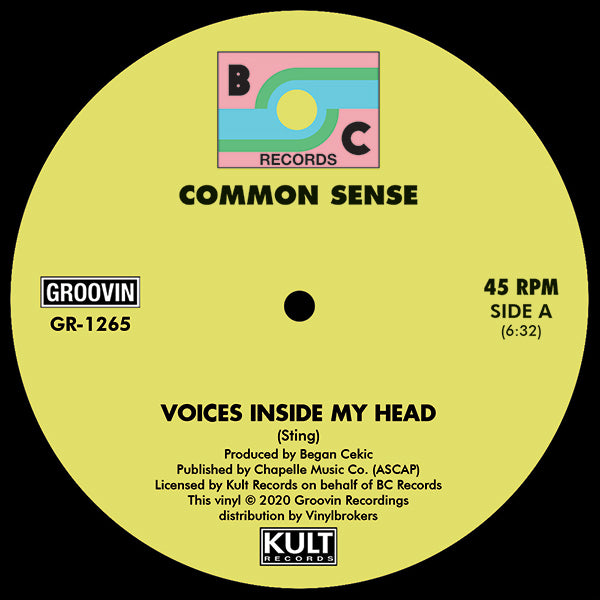 Common Sense ‎– Voices Inside My Head