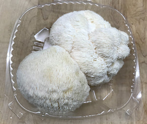Lions Mane Mushrooms(4oz clamshell)