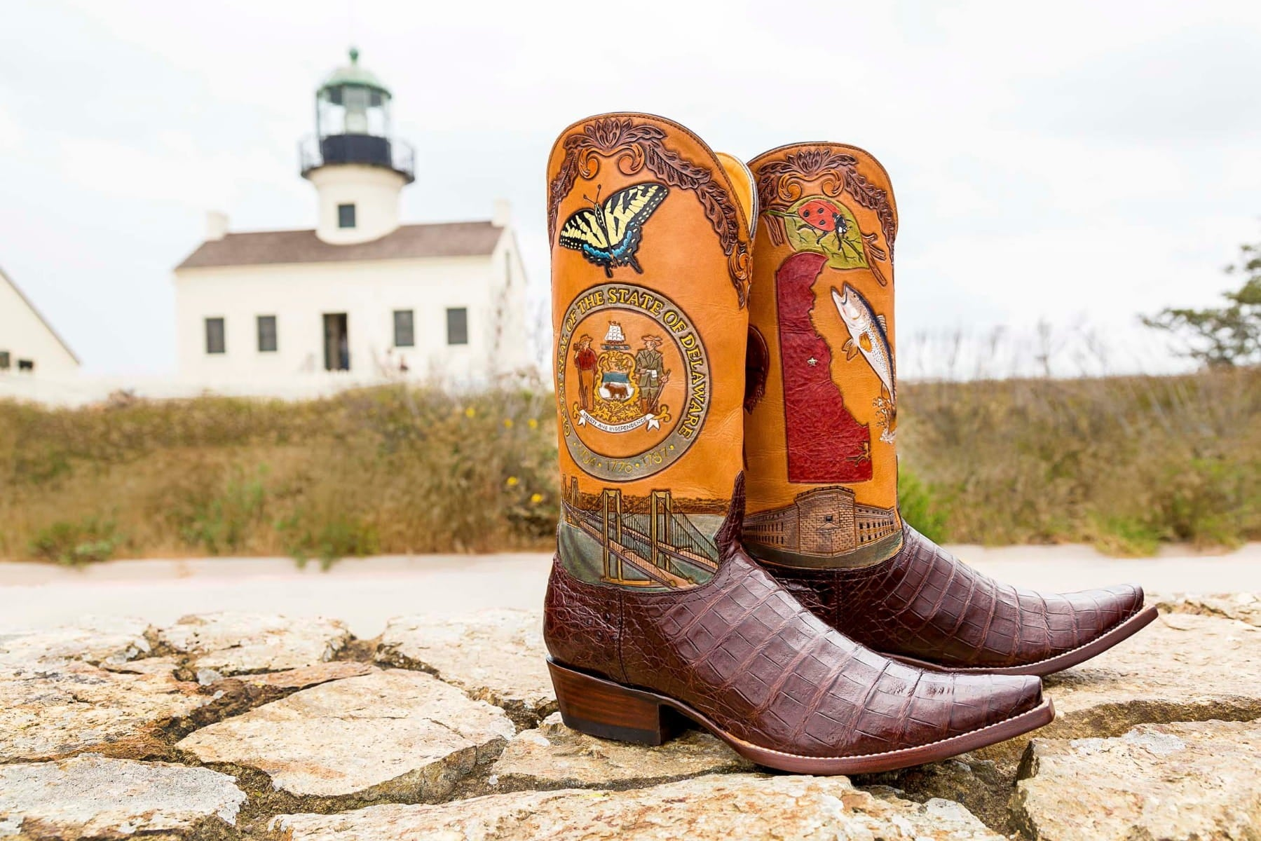 Delaware State Boot