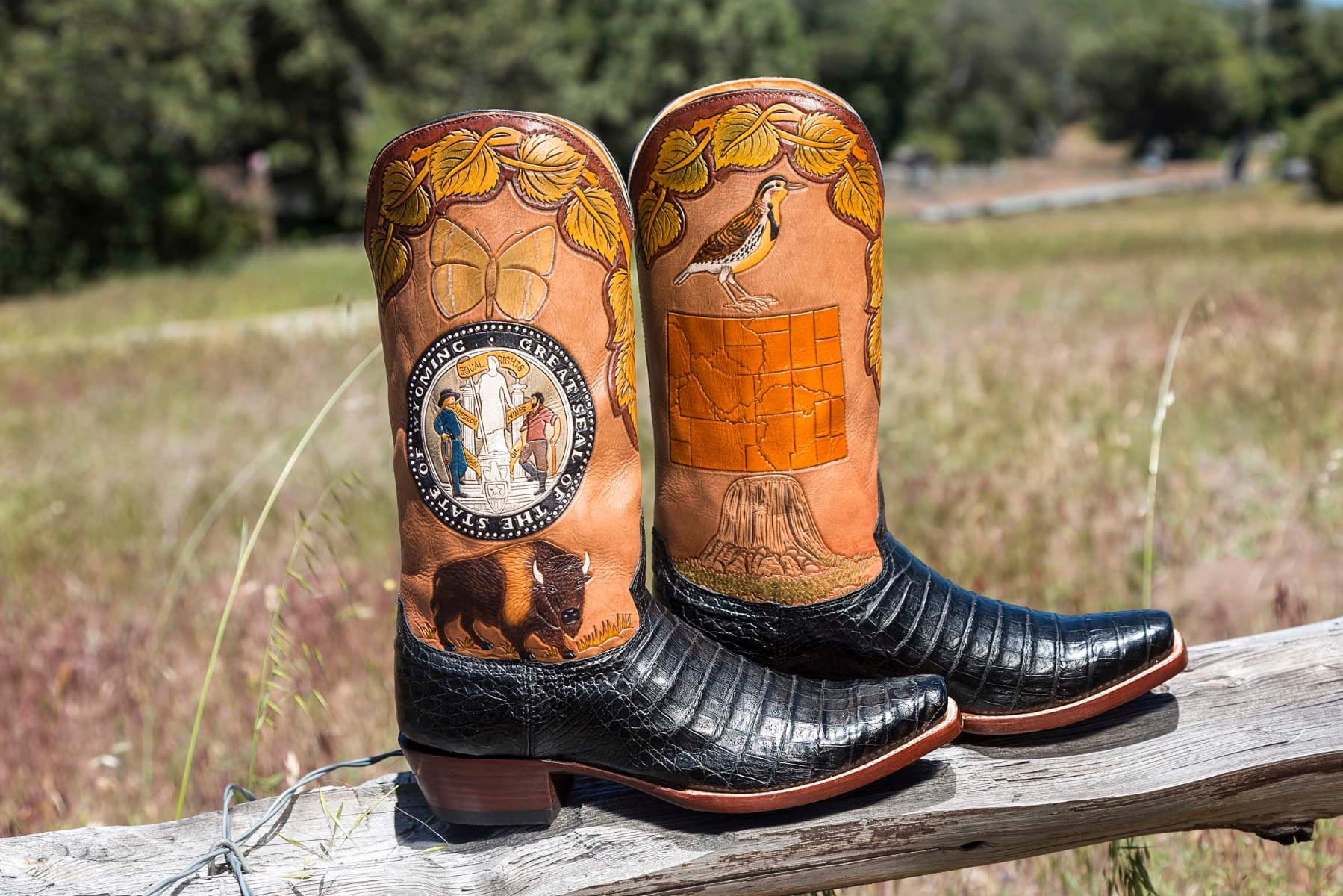 Wyoming State Boot