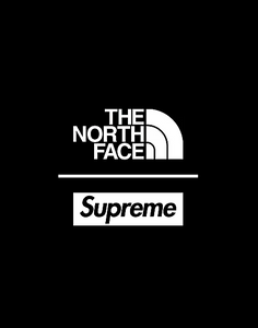 SUPREME THE NORTH FACE S LOGO POUCH