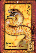 Load image into Gallery viewer, ANIMAL DREAMING ORACLE DECK - 45 Card Deck and 124-page Guidebook