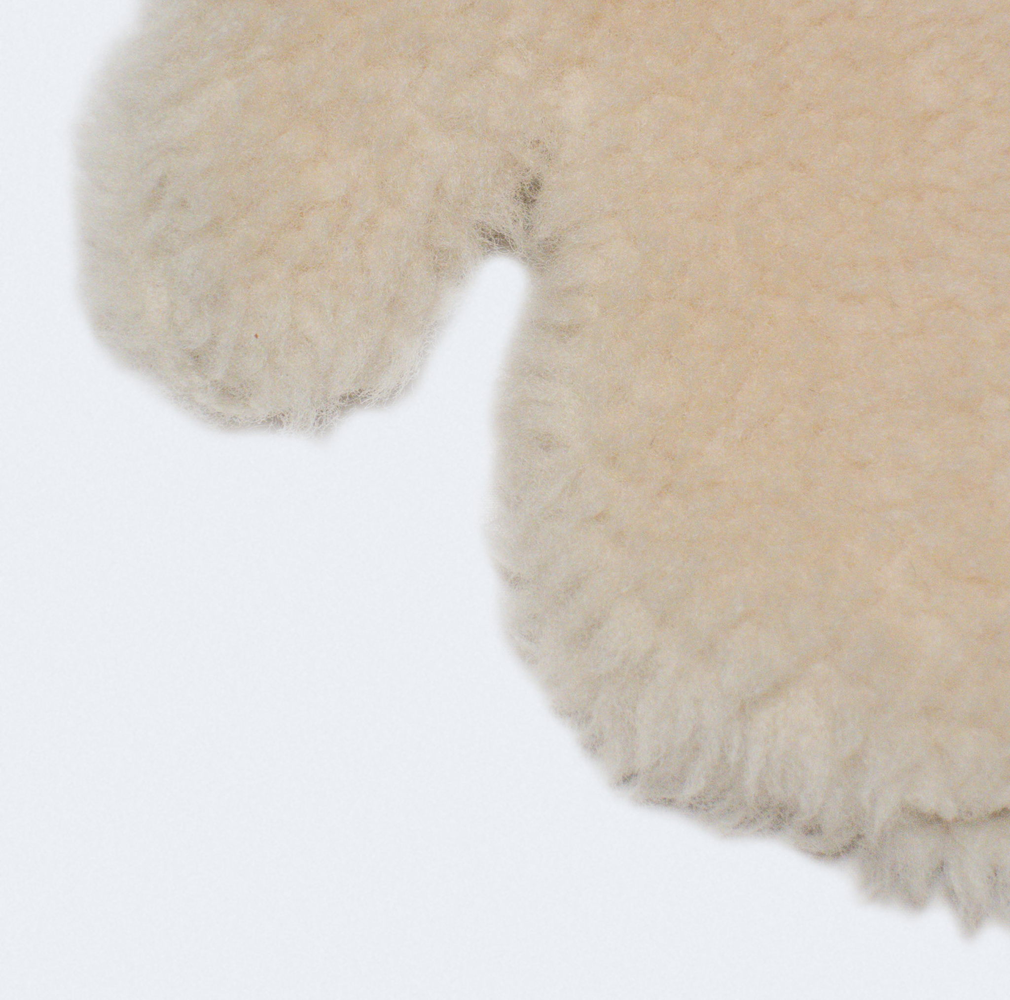 Bode Shearling Mittens