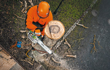 Load image into Gallery viewer, STIHL MS 201 TC-M