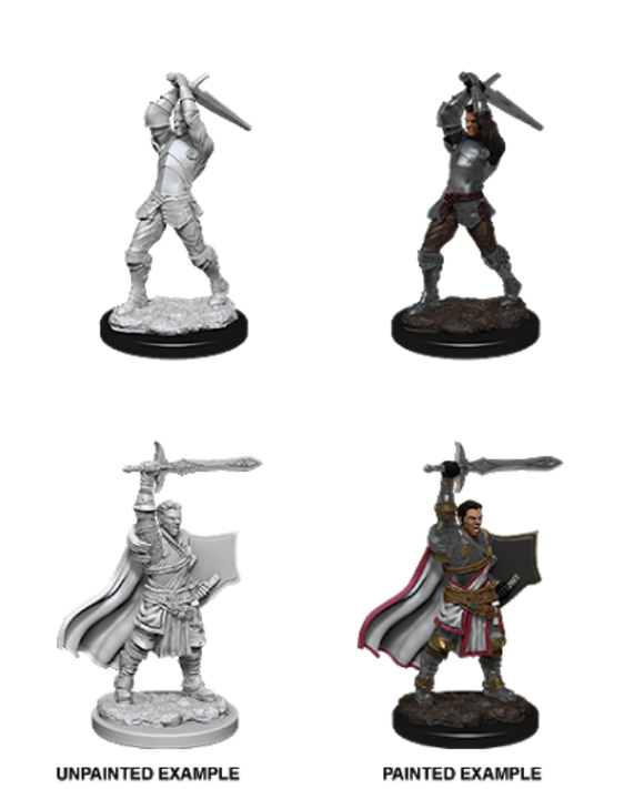D&D Nolzur's Marvelous Miniatures - Male Human Paladin