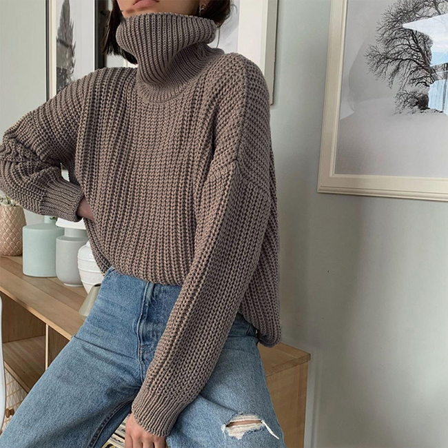 Woman Comfortable Knit Turtleneck Oversize Pullover