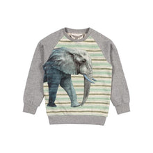 Load image into Gallery viewer, Paper Wings Raglan Sweater with Bands - Big Ears