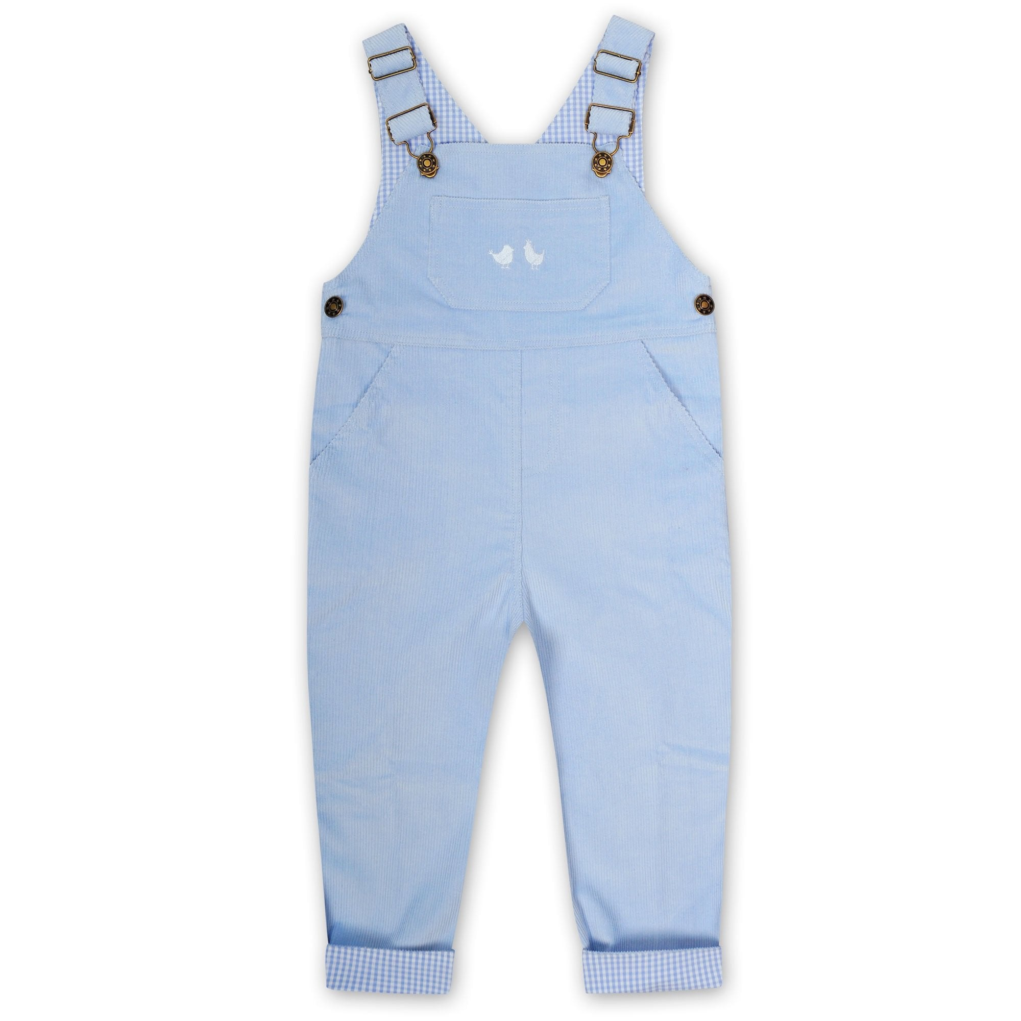 BOYS PALE BLUE GINGHAM COLLARED ROMPER