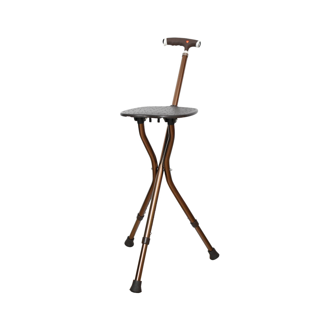 Walking Stick Chair Combo