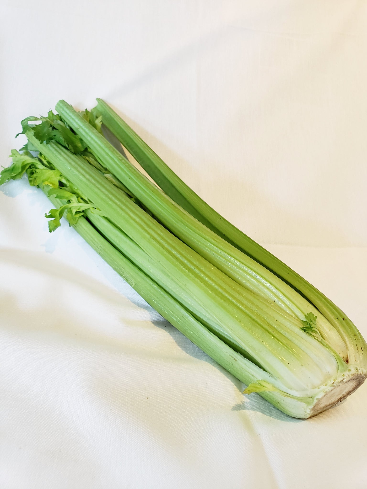 Celery, Organic (By the Bunch)
