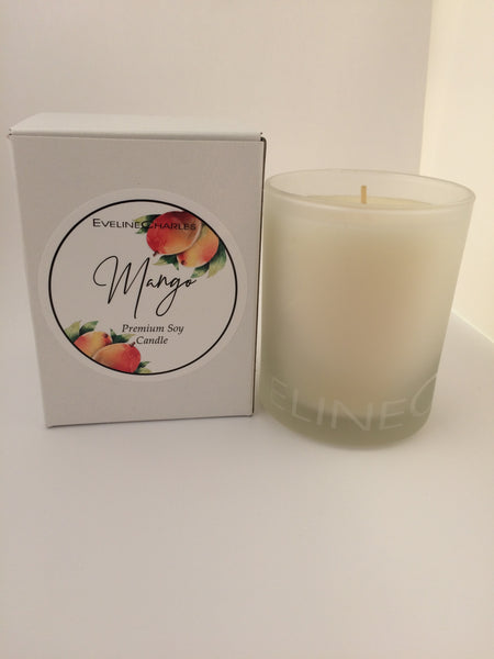 Scented Candle Mango