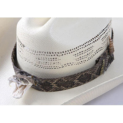 Randall's Wildlife Creations Rattlesnake Hatband with Head