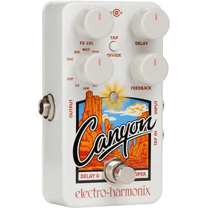 EHX Canyon Delay and Looper Pedal