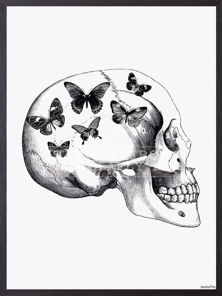 Frame skull with butterfly