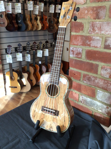 Blackwater concert ukulele spalted maple