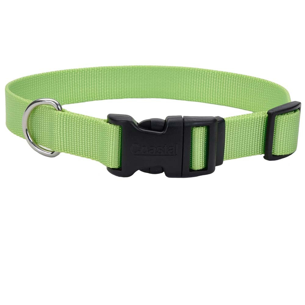 Coastal Adjustable Nylon Dog Collar with Plastic Buckle Lime 3/4in