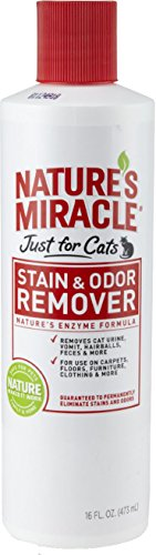 Nature's Miracle Just for Cats Stain & Odor Remover, 16-Ounce Pour Bottle (HG-5155)