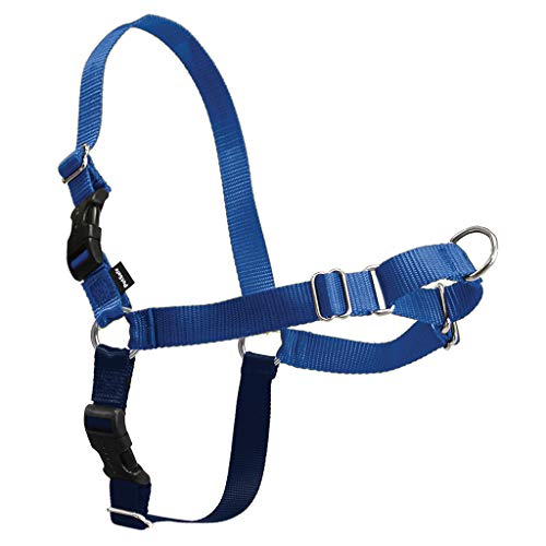 PetSafe Easy Walk Dog Harness, X-Large, Royal Blue/Navy
