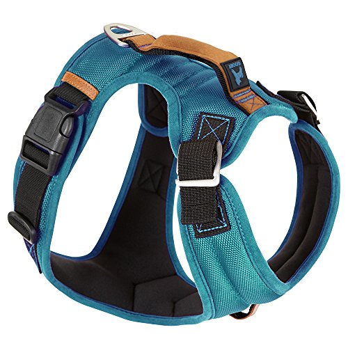 Gooby - Pioneer Dog Harness, Small Dog Head-in Harness with Control Handle and Seat Belt Restrain Captability, Turquoise, Small