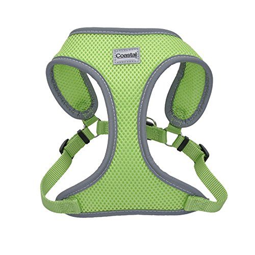 Coastal Pet Reflective Adjustable Dog Harness Lime 5/8 Inch X 23 Inch