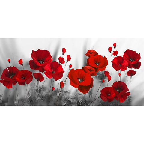 Diamond Painting-5D Full Round Drill Poppy Flower(100 X 50cm)