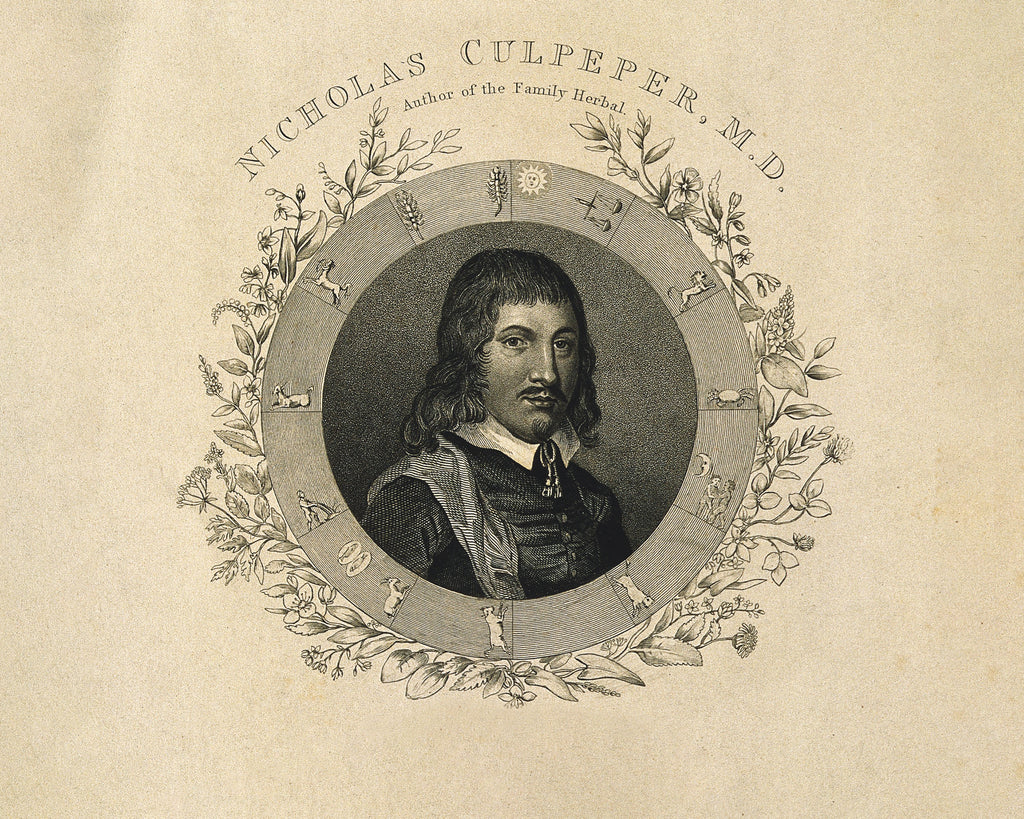 Meet Nicholas Culpeper, The Bad Boy of Botany