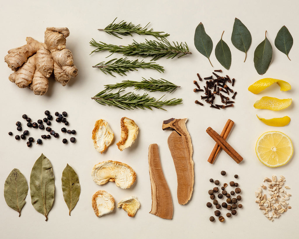 What Are Adaptogens and Nootropics?